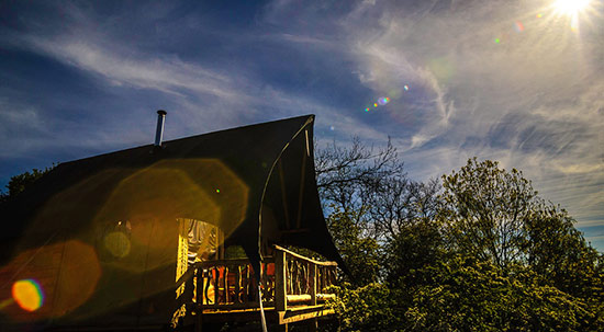 Bees Bower Perfect Glamping