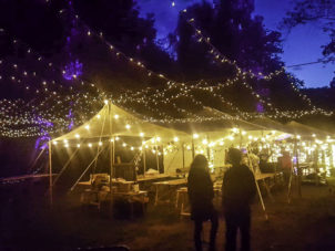 Extra Large Party Canopy LIghts